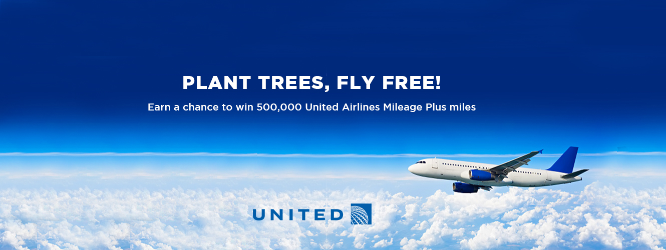 Airline miles sweepstakes