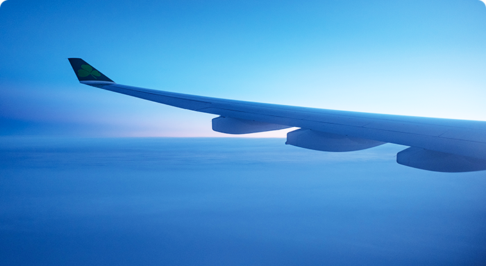 The wing of a plane