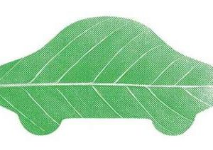 green_leaf_car